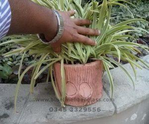 Fiberglass Dustbins Pots & Planters (34)