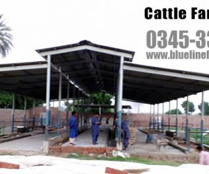 Cattle Shade and shelter Blue Line Fiberglass Karachi Pakistan